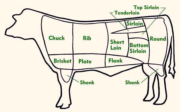 Beef Cut Anatomy Beef / Veal Cuts by Chart