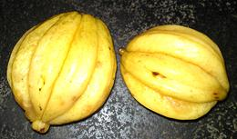 order seeds achachairu garcinia humilis