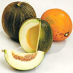 Melons Cantaloupe is perfect for breakfast whether it's in a salad, a smoothie, or on its own. clovegarden